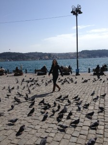 Istanbul, D and pigeons